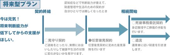 (図)将来型プラン